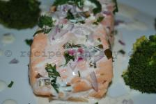 Salmon with green mint, spicy cream sauce and boiled broccoli